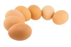 αυγό που απομονώνεται Στοκ Εικόνες