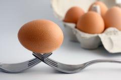 Αυγό στα δίκρανα στοκ φωτογραφίες