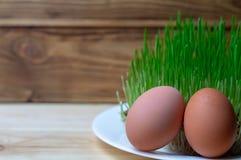 Αυγό στην πράσινη υγιεινή διατροφή Πάσχα διατροφής ικανότητας χλόης στοκ εικόνες με δικαίωμα ελεύθερης χρήσης