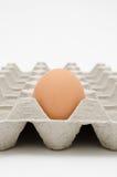 Αυγό στο δίσκο στοκ φωτογραφίες