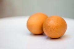 Αυγό στο πιάτο Στοκ φωτογραφία με δικαίωμα ελεύθερης χρήσης