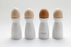 Αυγό στο φλυτζάνι Στοκ εικόνες με δικαίωμα ελεύθερης χρήσης