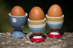 Αυγό τρία και φλυτζάνι με το σκοτεινό υπόβαθρο θαμπάδων Στοκ Εικόνες