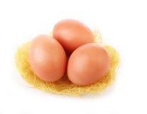 Αυγό τρία στη χλοώδη φωλιά που απομονώνεται στο λευκό Στοκ Εικόνες