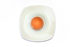 αυγό φλυτζανιών στοκ εικόνες