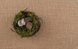 Αυγό φωλιών με τα νομίσματα Στοκ εικόνες με δικαίωμα ελεύθερης χρήσης