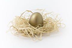 αυγό χαλκού Στοκ Εικόνες