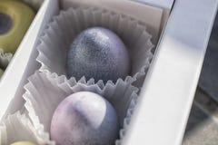 Αυγό-όπως την πραλίνα στα χρώματα κρητιδογραφιών στοκ εικόνες