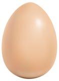 αυγό Στοκ Εικόνες
