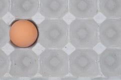 αυγό Στοκ φωτογραφία με δικαίωμα ελεύθερης χρήσης