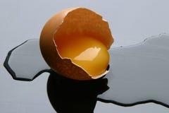 Αυγό Στοκ εικόνα με δικαίωμα ελεύθερης χρήσης