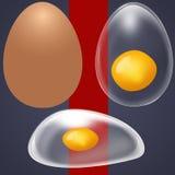 Αυγό Στοκ Φωτογραφία