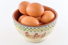 Αυγό Στοκ εικόνες με δικαίωμα ελεύθερης χρήσης