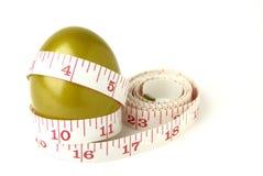 αυγό golde Στοκ εικόνες με δικαίωμα ελεύθερης χρήσης