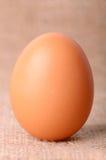 Αυγό sackcloth στο υπόβαθρο Στοκ Εικόνα