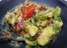 Αυθεντικό Guacamole στοκ εικόνες με δικαίωμα ελεύθερης χρήσης