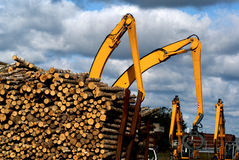 αυλή ξυλείας Στοκ Φωτογραφία