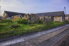 Αυλή σε ένα γεωργικό εγκαταλειμμένο αγρόκτημα Στοκ Φωτογραφία