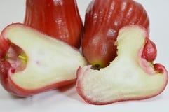 Αυξήθηκε δάγκωμα μήλων Στοκ φωτογραφία με δικαίωμα ελεύθερης χρήσης