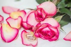 Αυξήθηκε, δαχτυλίδι μαργαριταριών και διαμαντιών Στοκ εικόνα με δικαίωμα ελεύθερης χρήσης
