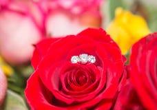 Αυξήθηκε, δαχτυλίδι μαργαριταριών και διαμαντιών Στοκ Φωτογραφίες