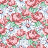 Αυξήθηκε και chamomile χέρι λουλουδιών σύροντας το άνευ ραφής σχέδιο, διανυσματικό floral υπόβαθρο, floral διακόσμηση κεντητικής, Στοκ φωτογραφίες με δικαίωμα ελεύθερης χρήσης