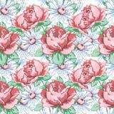 Αυξήθηκε και chamomile χέρι λουλουδιών σύροντας το άνευ ραφής σχέδιο, διανυσματικό floral υπόβαθρο, floral διακόσμηση κεντητικής  Στοκ Εικόνες
