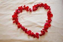 Αυξήθηκε καρδιά Στοκ εικόνες με δικαίωμα ελεύθερης χρήσης