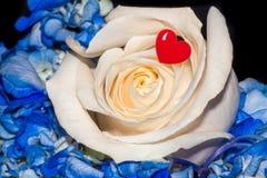 Αυξήθηκε κόκκινη καρδιά αγάπης λουλουδιών Στοκ Φωτογραφία