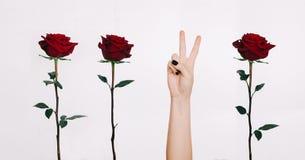 """Αυξήθηκε λουλούδια και ειρήνης συμβόλων δράσης χεριών της """"στο άσπρο υπόβαθρο στοκ φωτογραφία με δικαίωμα ελεύθερης χρήσης"""