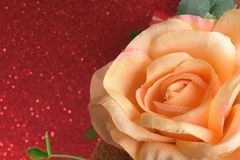Αυξήθηκε λουλούδια στην ημέρα βαλεντίνων στο κόκκινο ακτινοβολεί bokeh θολωμένο φω'τα αφηρημένο υπόβαθρο Στοκ Εικόνες