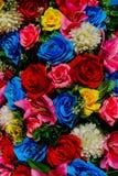 Αυξήθηκε λουλούδι της αγάπης Στοκ εικόνες με δικαίωμα ελεύθερης χρήσης