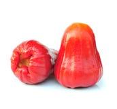 Αυξήθηκε μήλα Στοκ εικόνα με δικαίωμα ελεύθερης χρήσης