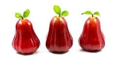 Αυξήθηκε μήλο Στοκ φωτογραφίες με δικαίωμα ελεύθερης χρήσης