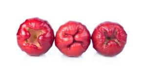 Αυξήθηκε μήλα απομονώνει με το άσπρο υπόβαθρο Στοκ Φωτογραφία