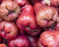 Αυξήθηκε μήλα Στοκ Φωτογραφία