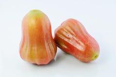Αυξήθηκε μήλα Στοκ Εικόνες