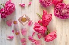 Αυξήθηκε ουσιαστικό πετρέλαιο στα μπουκάλια γυαλιού για το aromatherapy, σαλόνι SPA, μασάζ Στοκ εικόνα με δικαίωμα ελεύθερης χρήσης