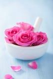 Αυξήθηκε λουλούδια στο κονίαμα για τη aromatherapy SPA Στοκ Εικόνες
