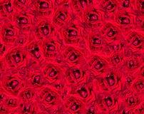Αυξήθηκε λουλούδι για το σχέδιο υποβάθρου Στοκ φωτογραφία με δικαίωμα ελεύθερης χρήσης