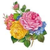 Αυξήθηκε, λουλούδι, σχέδιο, ζωγραφική Στοκ Φωτογραφίες