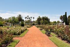 Αυξήθηκε πάρκο (Rosedal), Μπουένος Άιρες Αργεντινή Στοκ Φωτογραφίες