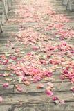 Αυξήθηκε πέταλα λουλουδιών Στοκ Φωτογραφίες