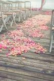 Αυξήθηκε πέταλα λουλουδιών Στοκ Εικόνα