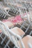 Αυξήθηκε πέταλα λουλουδιών Στοκ Εικόνες