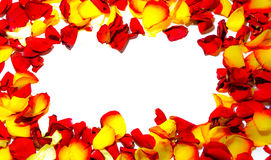 Αυξήθηκε πλαίσιο λουλουδιών ως ρομαντική κάρτα στο άσπρο υπόβαθρο στοκ φωτογραφία με δικαίωμα ελεύθερης χρήσης