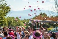 Αυξήθηκε φεστιβάλ επιλογής Στοκ εικόνα με δικαίωμα ελεύθερης χρήσης