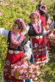 Αυξήθηκε φεστιβάλ επιλογής Στοκ Φωτογραφίες