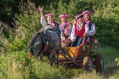 Αυξήθηκε φεστιβάλ επιλογής Στοκ εικόνες με δικαίωμα ελεύθερης χρήσης