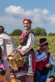 Αυξήθηκε φεστιβάλ επιλογής Στοκ φωτογραφία με δικαίωμα ελεύθερης χρήσης